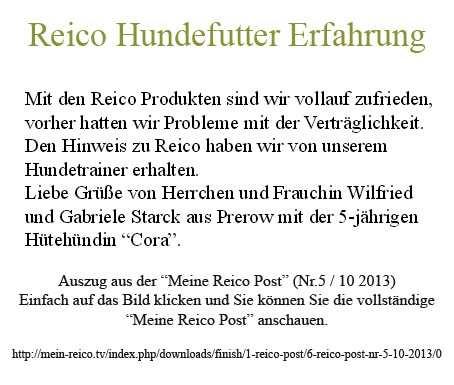 reico-erfahrungsberichte-Hundenahrung